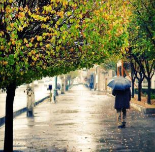 Arak in a rainy Day -